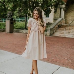 Roolee | Blush Date Night Lace Detail Dress